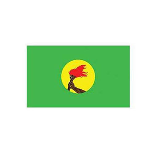 Flag-Zaire