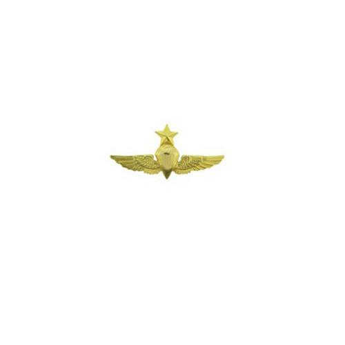 Wing USN Para Senior