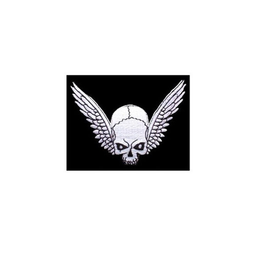 Patch Skull And Wings