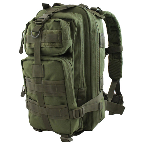 Raven X MOLLE Small Assault Backpack - Olive Drab